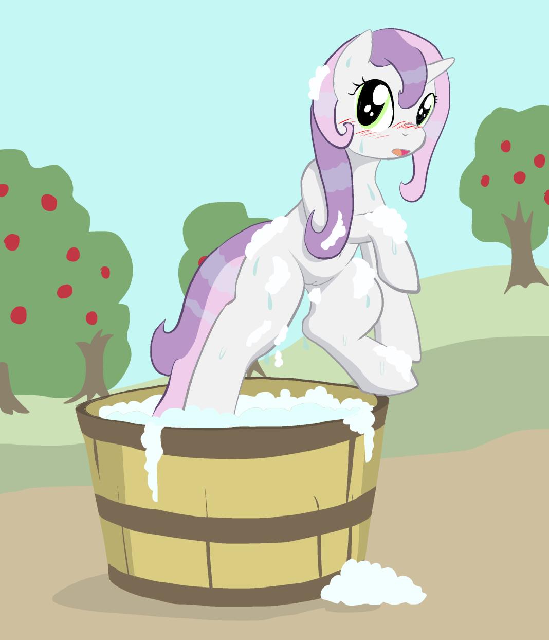 little sweetie belle my pony Pixie-bob my hero