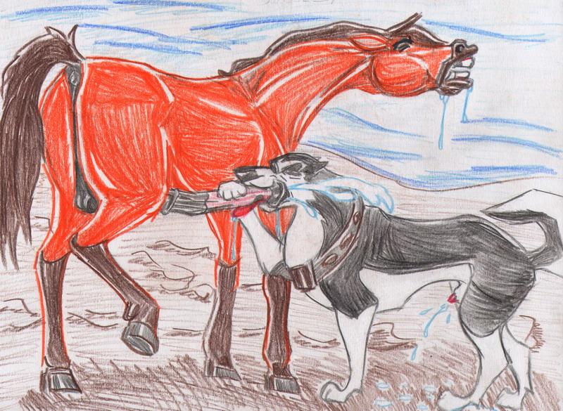 feral delights couples: stallion Good luck! ninomiya-kun
